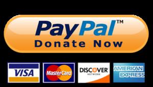 pulsante donazioni paypal